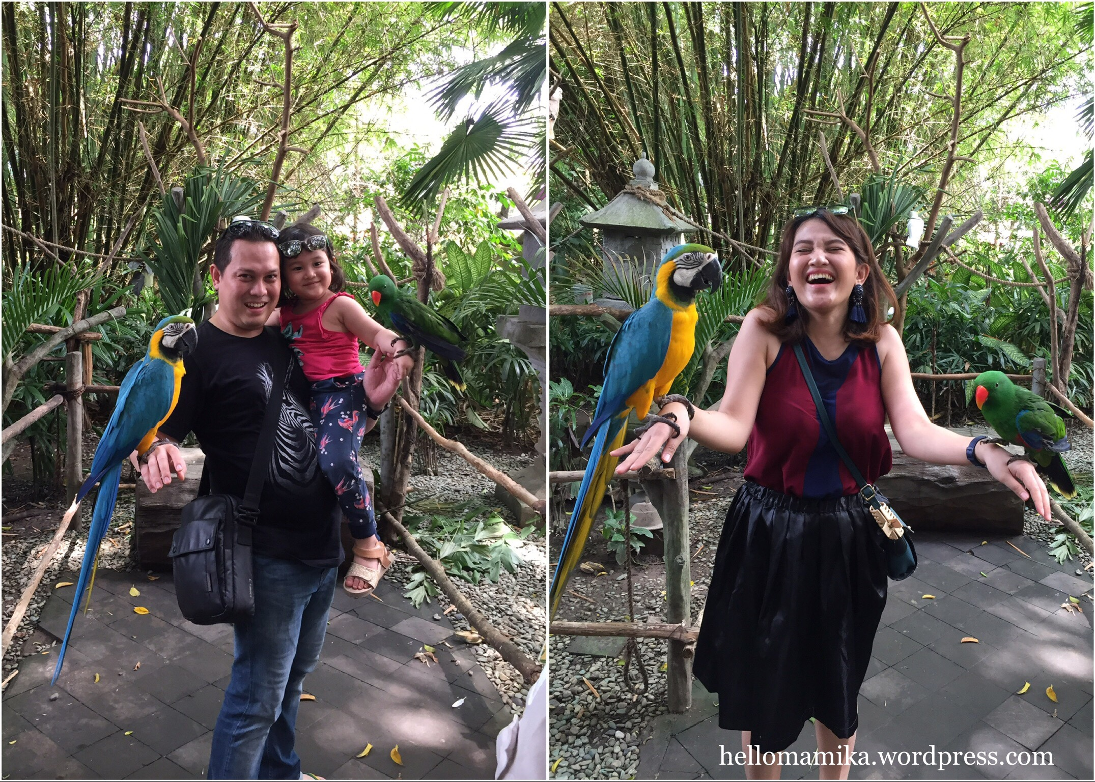 FUN DAY SUNDAY AT BALI SAFARI & MARINE PARK