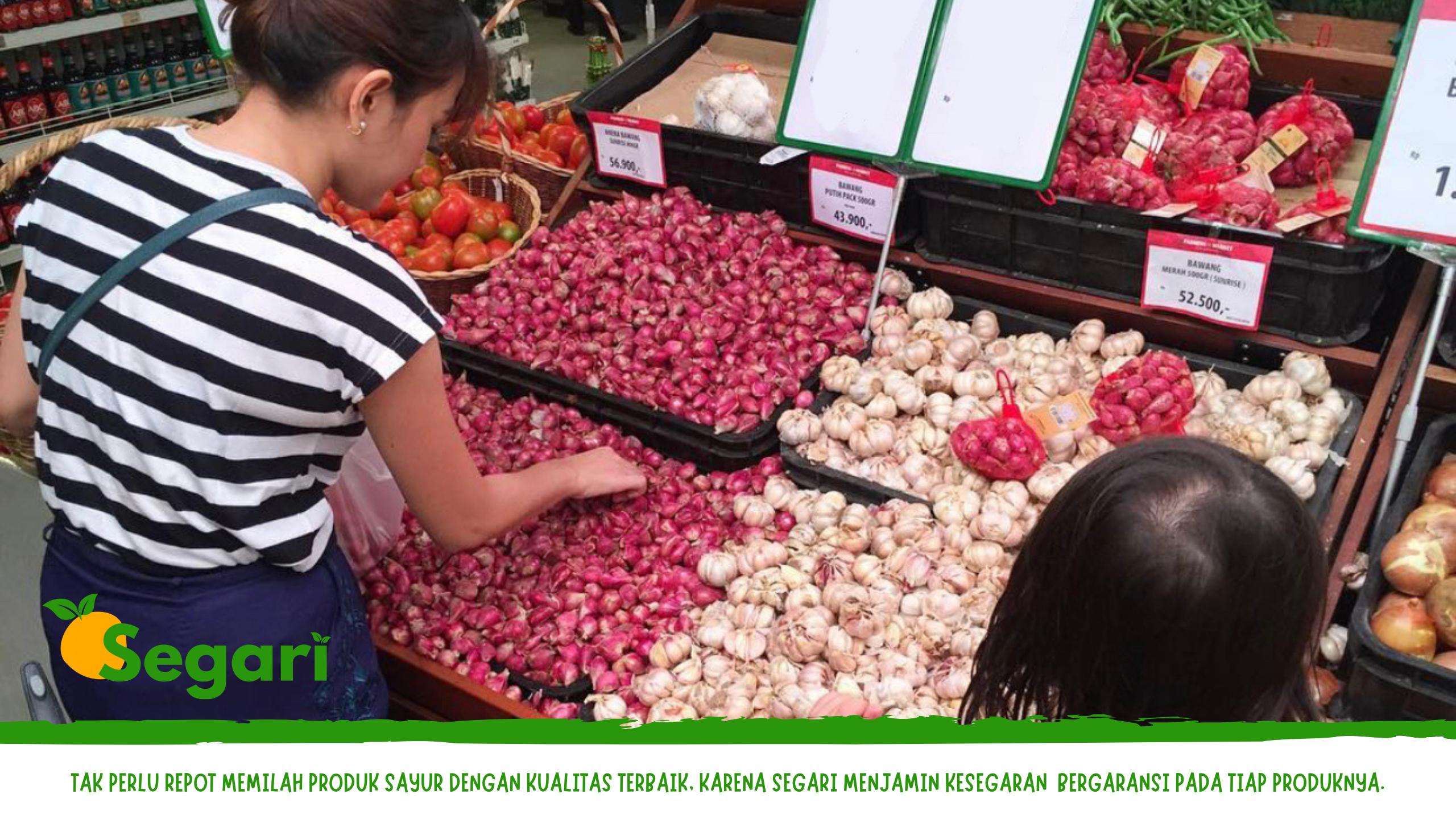 Review belanja sayur online berkualitas segari