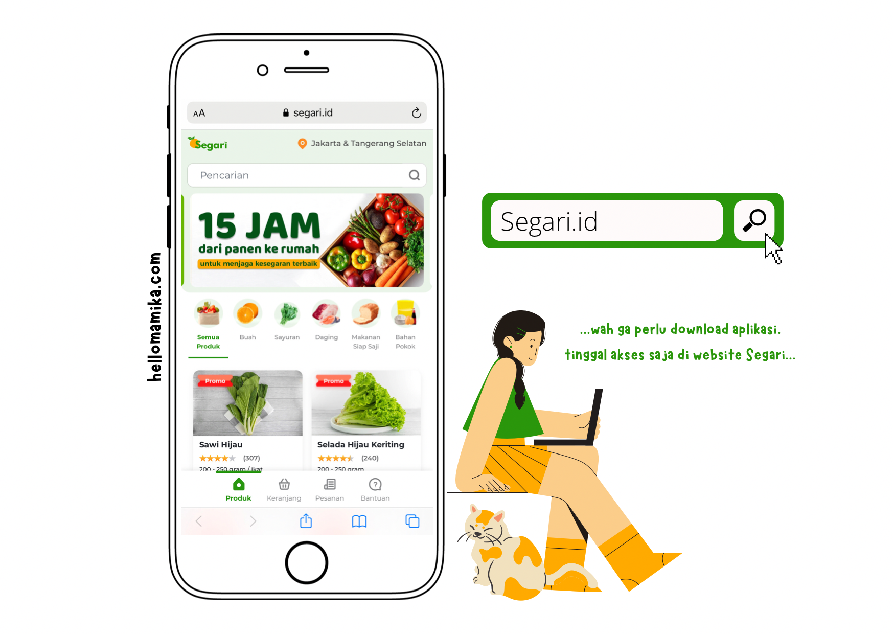 Review segari sayur online 15 jam dari panen ke rumah