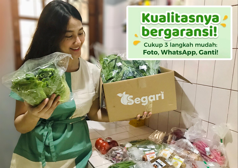Review segari sayur online kualitas bergaransi